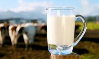 Photo of Obavijest mljekarima !!!