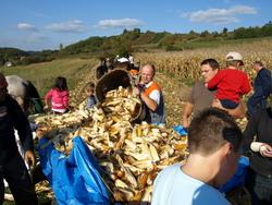 Photo of Očuvanje starih običaja – Trgatva 2009 u Luki