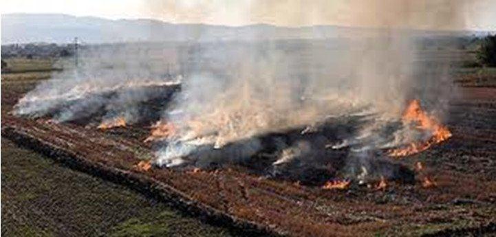 Photo of Upravljanje žetvenim ostatcima