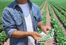 Photo of Obavijest o podnošenju zahtjeva za potpore u poljoprivredi – produljen rok prijava
